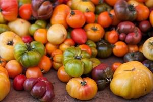 heirloom-tomates