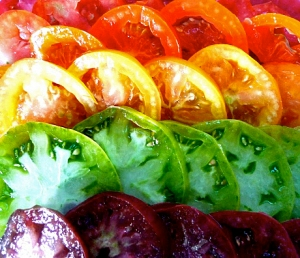 tomato rainbow