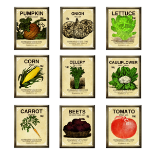 marisa-lerin-seed-packet-brads-asset-brad-garden-seeds-vegetables-embellishment-commercial-use